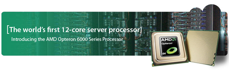 AMD Opteron Atlas Servers